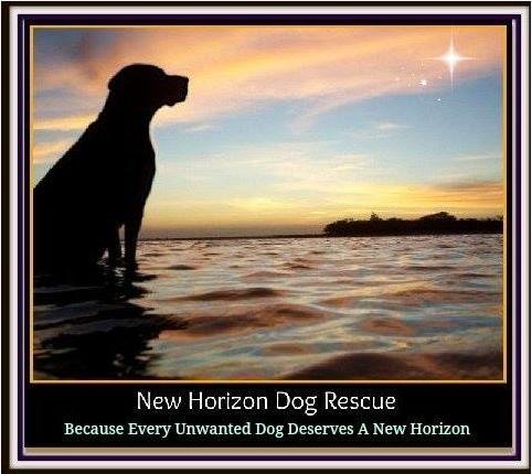 New Horizon Dog Rescue