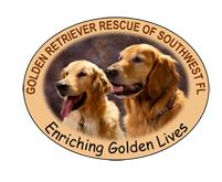 Golden Retriever Rescue of Southwest Florida