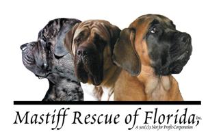 Mastiff Rescue of Florida